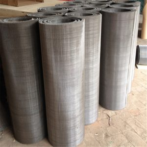 Hastelloy C22 Wiremesh